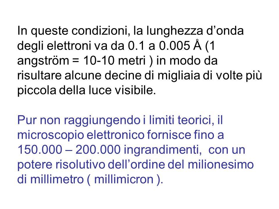 In queste condizioni, la lunghezza donda degli elettroni va da 0.1 a 0.005 Å (1 angström = 10-10 metri ) in modo da risultare alcune decine di migliai