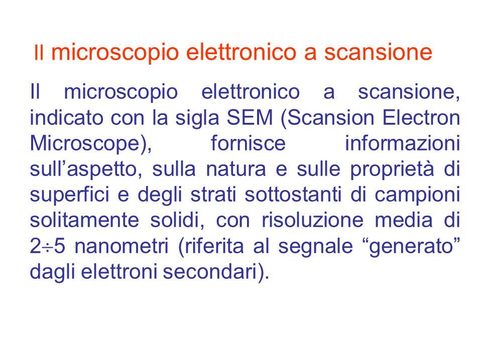Il microscopio elettronico a scansione, indicato con la sigla SEM (Scansion Electron Microscope), fornisce informazioni sullaspetto, sulla natura e su