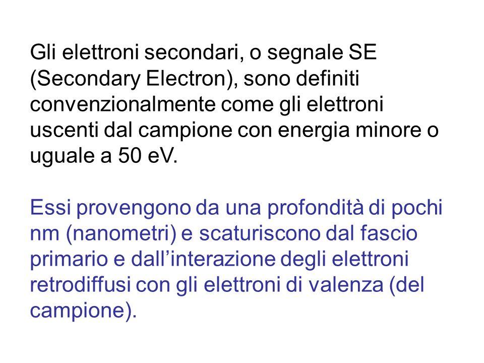 Gli elettroni secondari, o segnale SE (Secondary Electron), sono definiti convenzionalmente come gli elettroni uscenti dal campione con energia minore