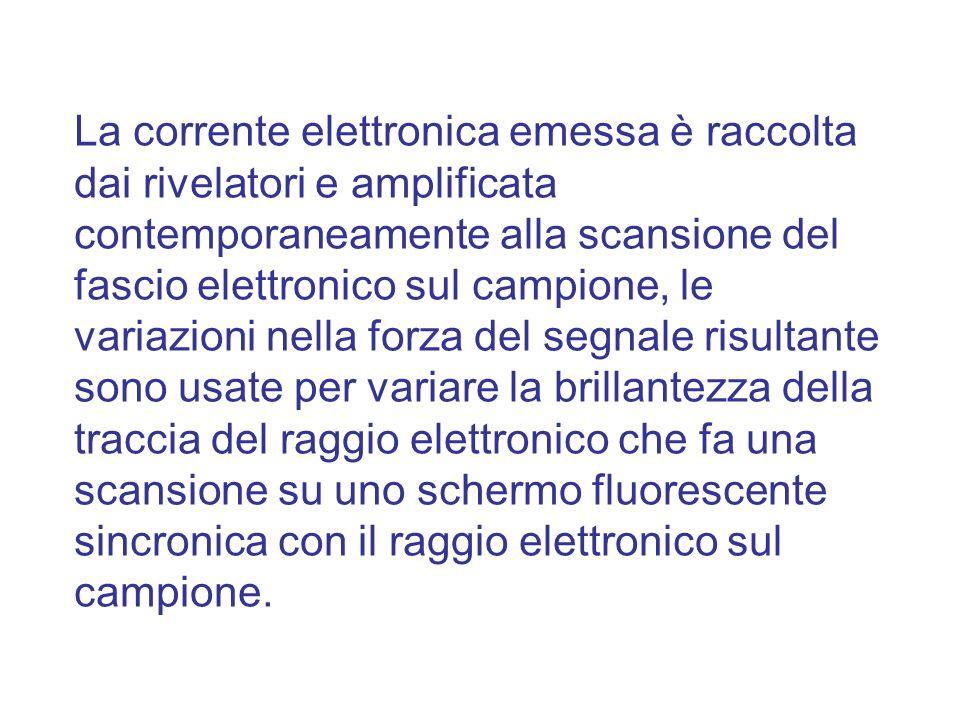 La corrente elettronica emessa è raccolta dai rivelatori e amplificata contemporaneamente alla scansione del fascio elettronico sul campione, le varia