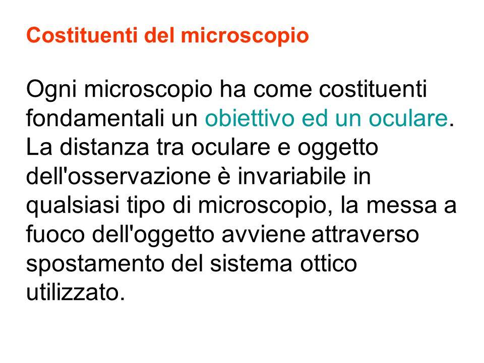 Costituenti del microscopio Ogni microscopio ha come costituenti fondamentali un obiettivo ed un oculare. La distanza tra oculare e oggetto dell'osser