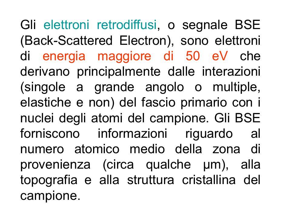 Gli elettroni retrodiffusi, o segnale BSE (Back-Scattered Electron), sono elettroni di energia maggiore di 50 eV che derivano principalmente dalle int