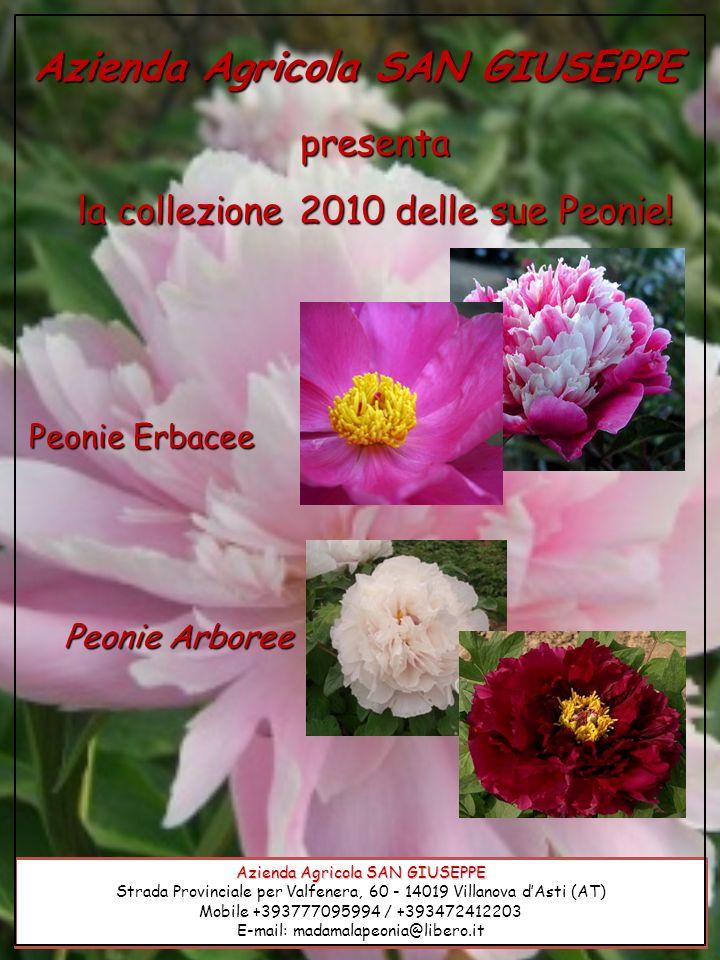 Azienda Agricola SAN GIUSEPPE Strada Provinciale per Valfenera, 60 - 14019 Villanova dAsti (AT) Mobile +393777095994 / +393472412203 E-mail: madamalap