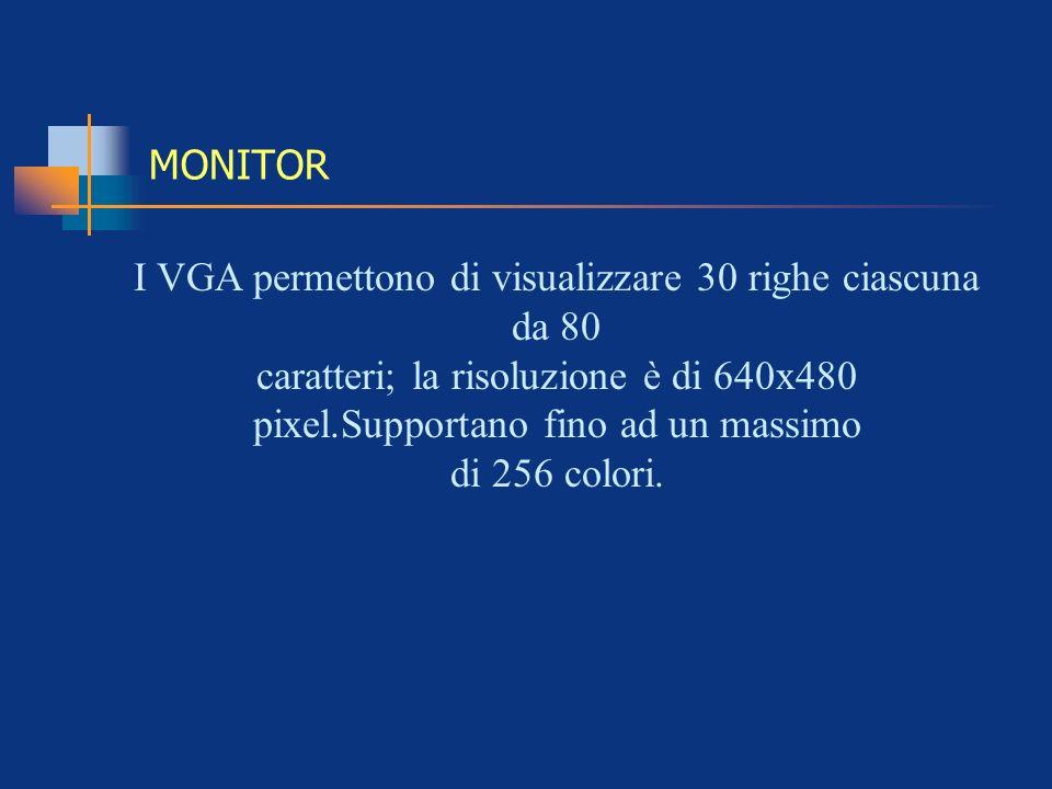 MONITOR I VGA permettono di visualizzare 30 righe ciascuna da 80 caratteri; la risoluzione è di 640x480 pixel.Supportano fino ad un massimo di 256 col