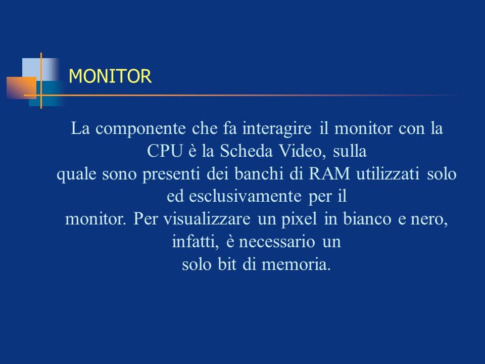 MONITOR La componente che fa interagire il monitor con la CPU è la Scheda Video, sulla quale sono presenti dei banchi di RAM utilizzati solo ed esclus