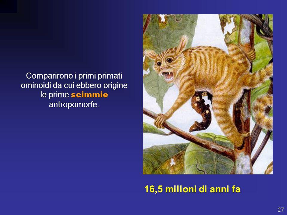 26 I MAMMIFERI alla conquista della Terra! 41 milioni di anni fa