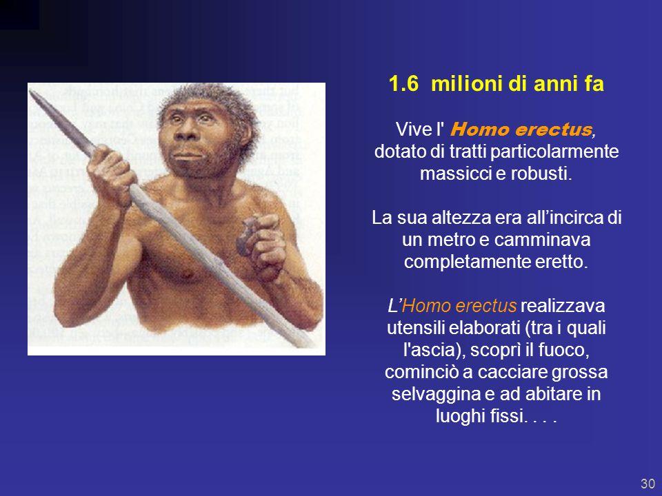 29 4 milioni di anni fa Primo stadio dellevoluzione umana: Australophitecus.