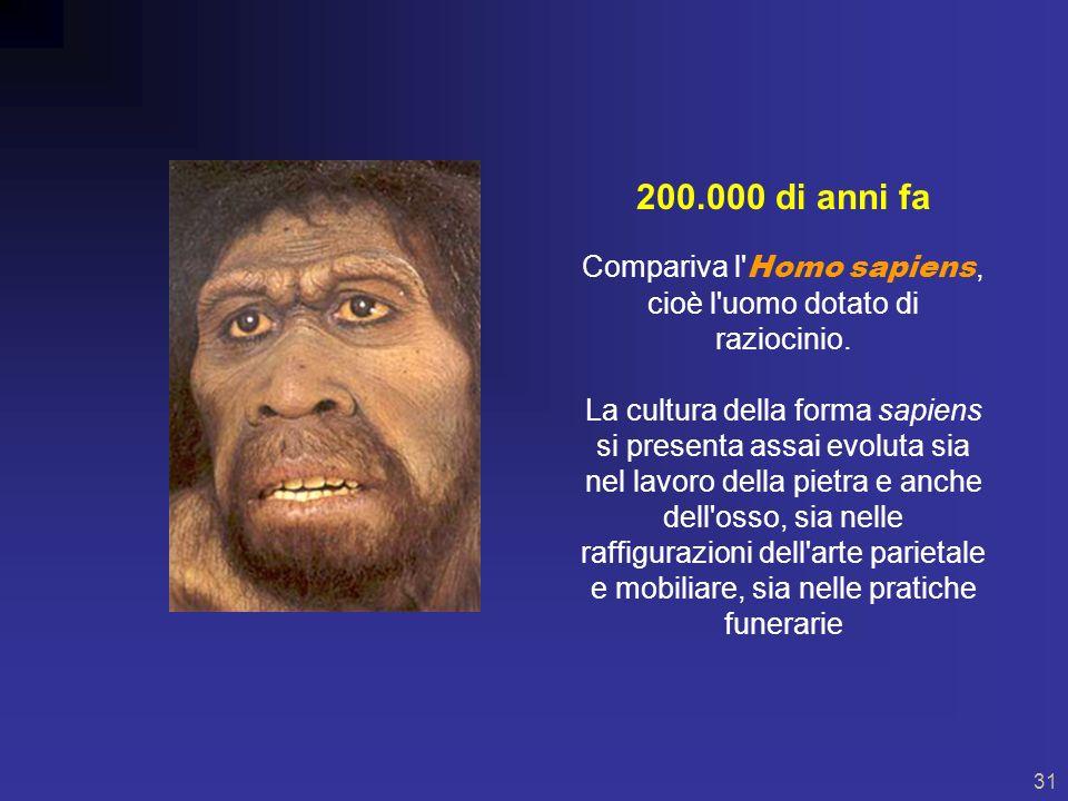 30 1.6 milioni di anni fa Vive l Homo erectus, dotato di tratti particolarmente massicci e robusti.
