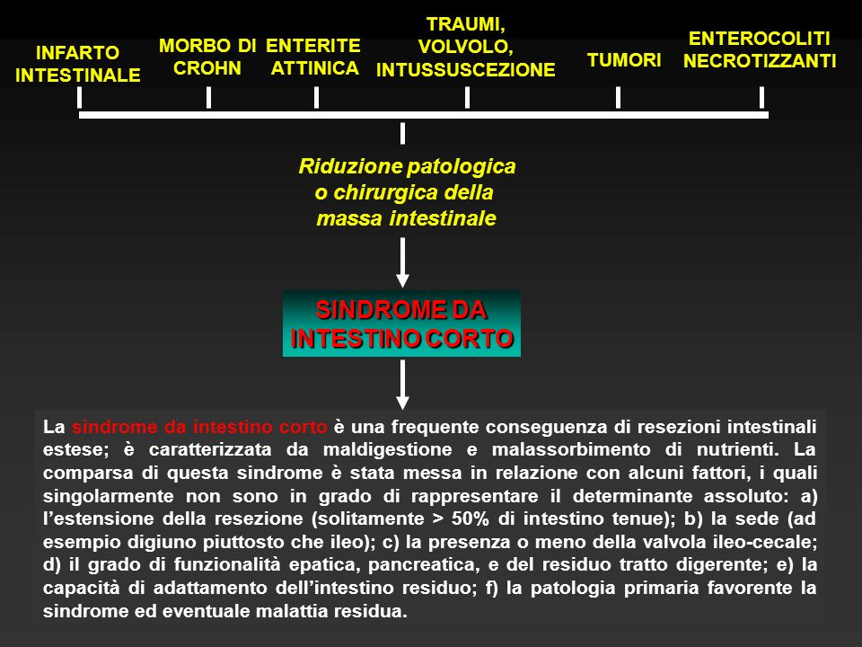 INFARTOINTESTINALE MORBO DI CROHNENTERITEATTINICA TRAUMI,VOLVOLO,INTUSSUSCEZIONE TUMORI ENTEROCOLITINECROTIZZANTI Riduzione patologica o chirurgica della massa intestinale SINDROME DA INTESTINO CORTO Periodo dellinsorgenza La SIC causa: diarrea steatorrea calo ponderale disidratazione acidosi metabolica escoriazioni perianali sintomi da carenza elettrolitica (K, Ca, Na) e vitamine (B12, A,D,E,K)