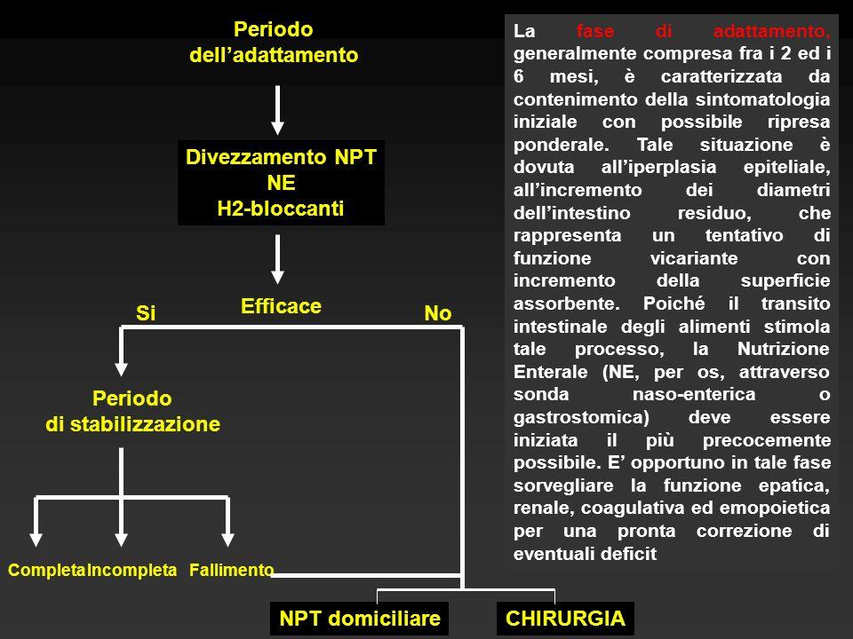 Periodo delladattamento Divezzamento NPT NE H2-bloccanti Efficace SiNo Periodo di stabilizzazione La fase di adattamento, generalmente compresa fra i