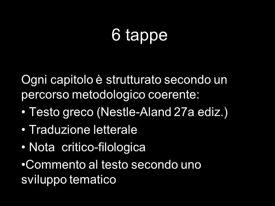 6 tappe Ogni capitolo è strutturato secondo un percorso metodologico coerente: Testo greco (Nestle-Aland 27a ediz.) Traduzione letterale Nota critico-