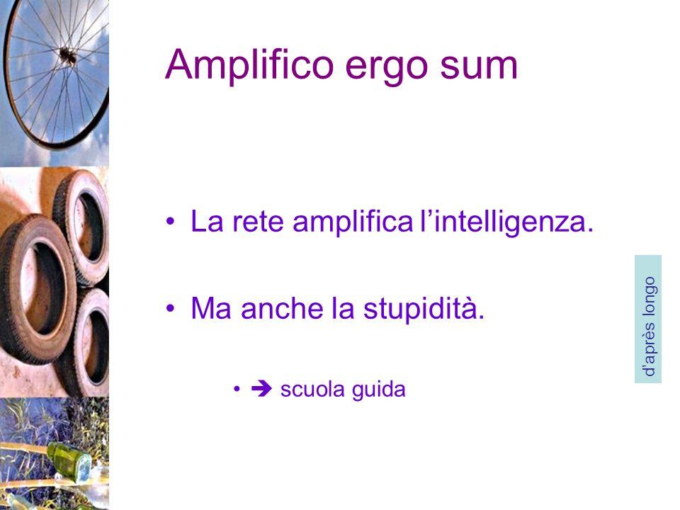 Amplifico ergo sum La rete amplifica lintelligenza.