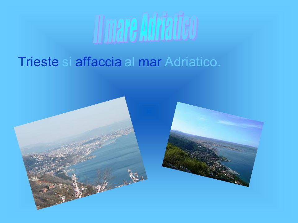 Trieste si affaccia al mar Adriatico.