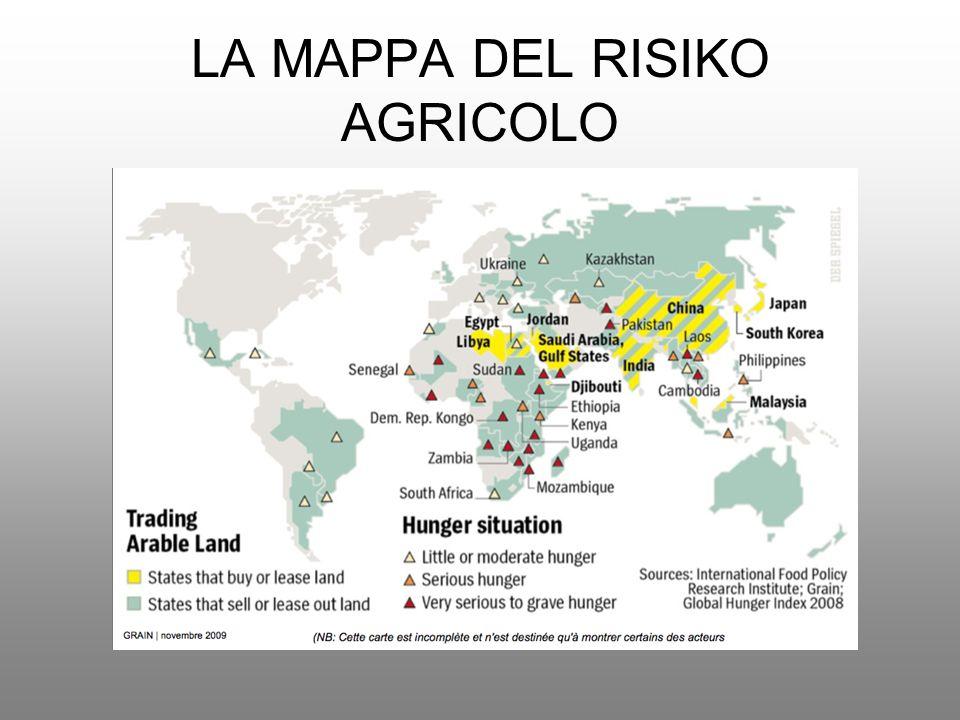 AFRICA IN SVENDITA La Commissione Economica delle Nazioni Unite per lAfrica (UNECA) ha quantificato in 733 milioni di ettari la terra arabile africana.