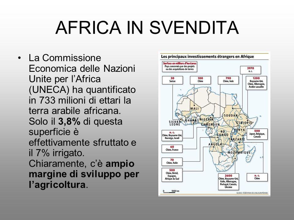 AFRICA IN SVENDITA La Commissione Economica delle Nazioni Unite per lAfrica (UNECA) ha quantificato in 733 milioni di ettari la terra arabile africana