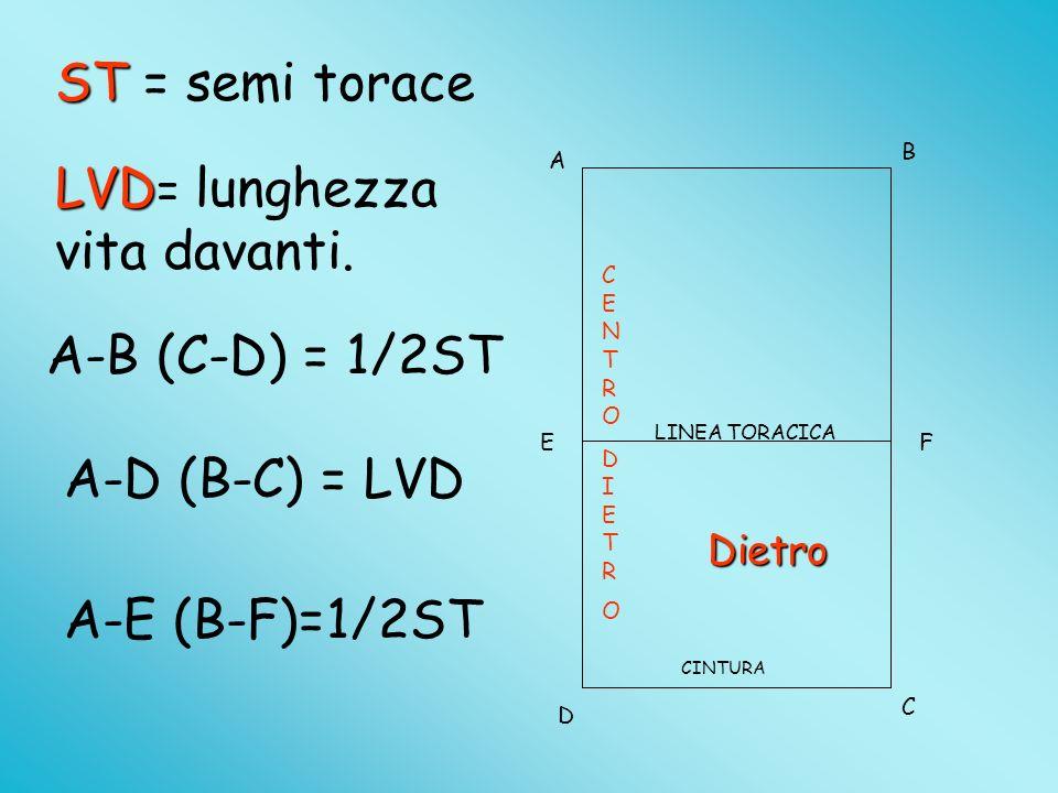 A B D C EF ST = semi torace A-B (C-D) = 1/2ST A-D (B-C) = LVD A-E (B-F)=1/2ST LINEA TORACICA CINTURA LVD = lunghezza vita davanti.
