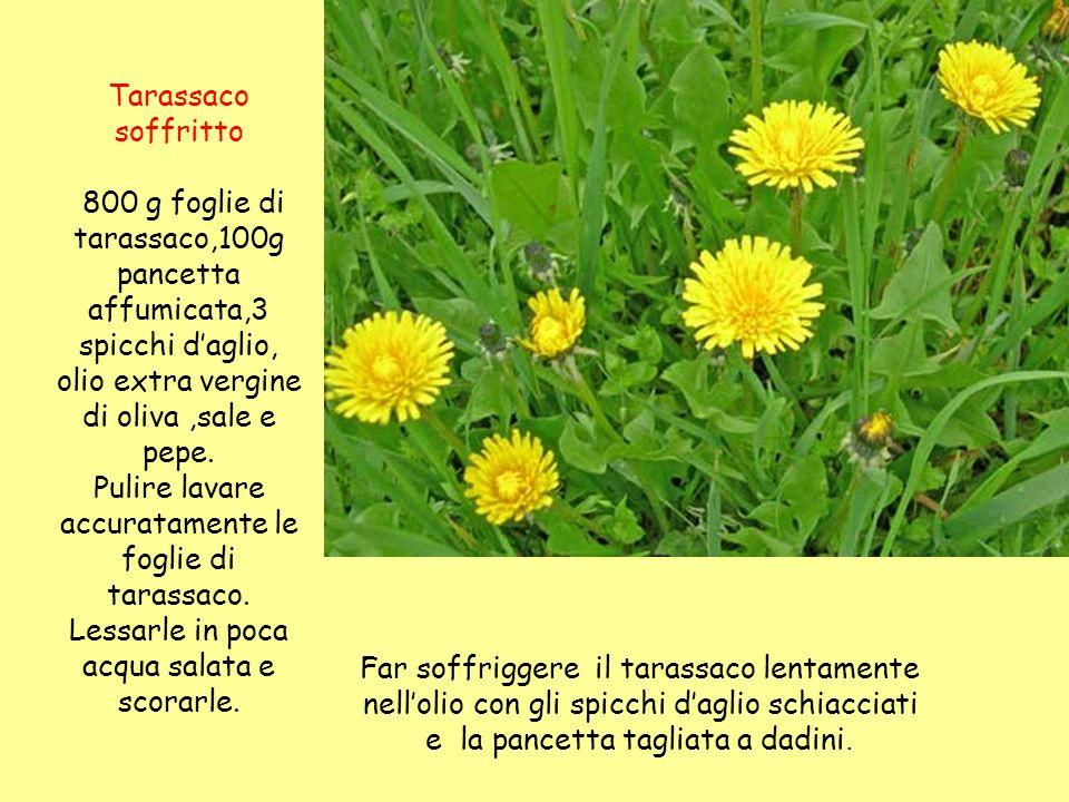 Tarassaco soffritto 800 g foglie di tarassaco,100g pancetta affumicata,3 spicchi daglio, olio extra vergine di oliva,sale e pepe. Pulire lavare accura