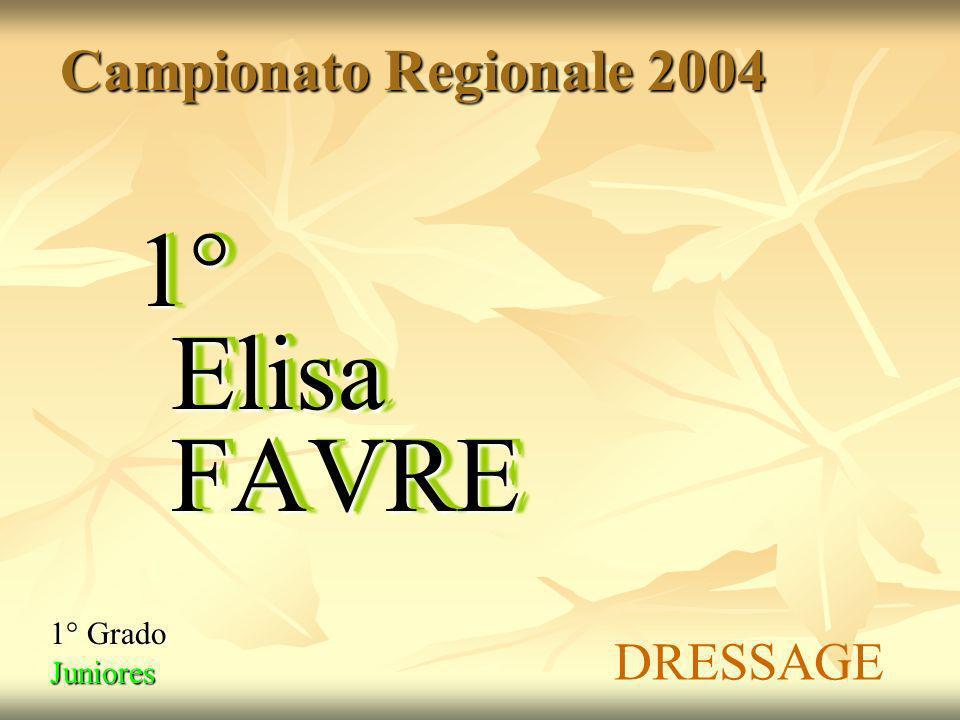 Campionati Italiani Disabili Fisici Andrea VIGON Caltagirone – Maggio 2004 Giovanni BALLAURI ORO Dressage Grado 1A ARGENTO Dressage Grado 3 BRONZO Dressage Grado 2 Francesca NIEROZ