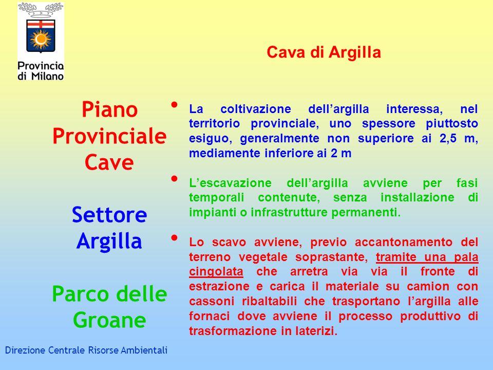 Piano Provinciale Cave Settore Argilla Parco delle Groane Direzione Centrale Risorse Ambientali Cava di Argilla La coltivazione dellargilla interessa,