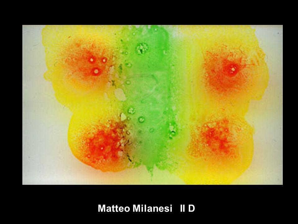 Matteo Milanesi II D
