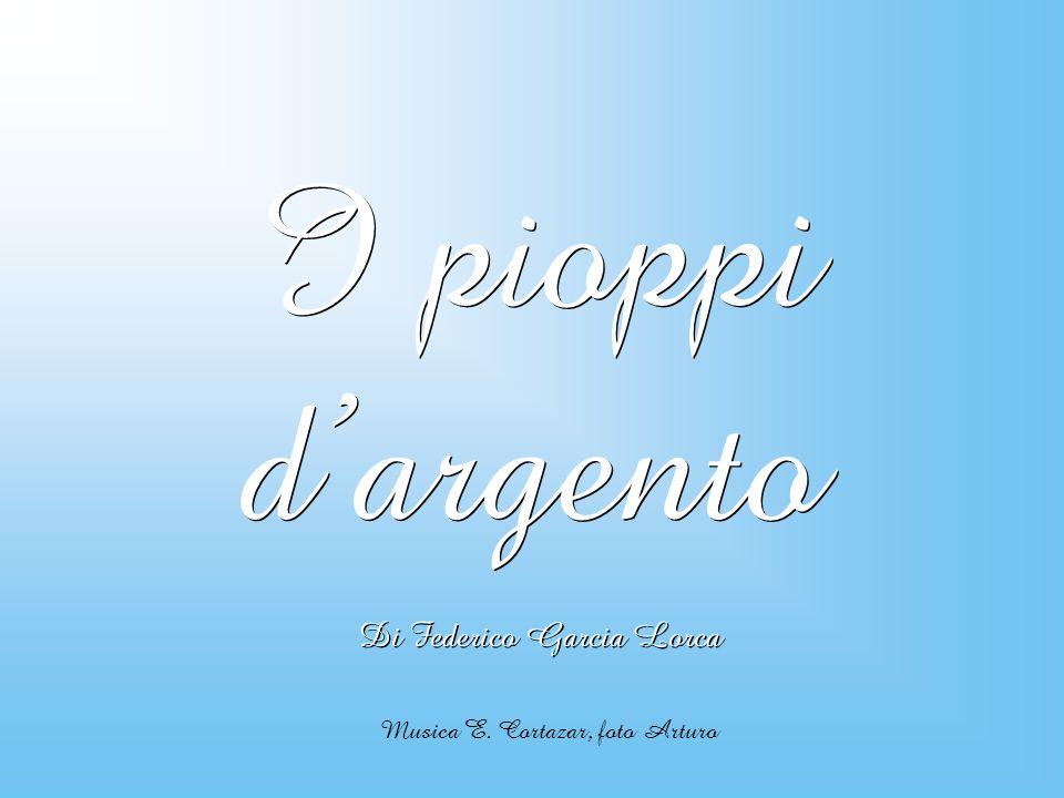 I pioppi dargento I pioppi dargento Di Federico Garcia Lorca Musica E. Cortazar, foto Arturo