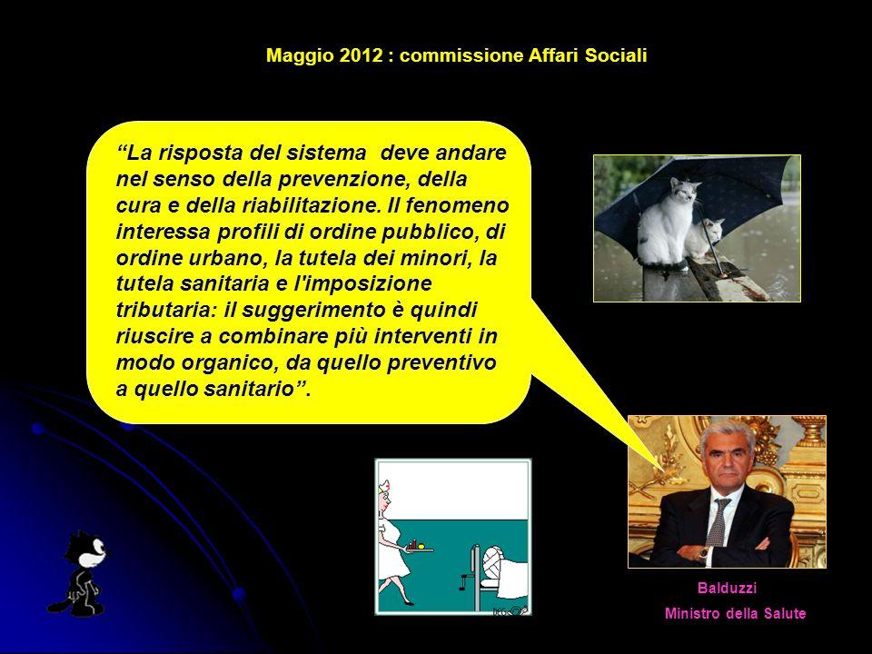 Maggio 2012 : commissione Affari Sociali Balduzzi Ministro della Salute La risposta del sistema deve andare nel senso della prevenzione, della cura e della riabilitazione.