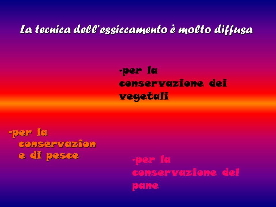 La tecnica dellessiccamento è molto diffusa La tecnica dellessiccamento è molto diffusa -per la conservazion e di pesce - per la conservazione dei veg