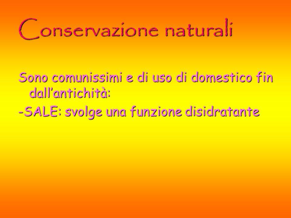 Conservazione naturali Sono comunissimi e di uso di domestico fin dallantichità: -SALE: svolge una funzione disidratante