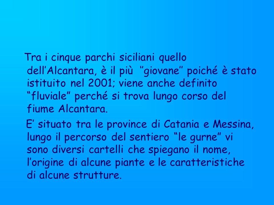 Il nome Alcantara deriva dallarabo ponte, anche se il fiume è molto lontano dall Etna, o comunque tutti gli altri vulcani della Sicilia, scorre sulla pietra lavica e crea lungo il suo percorso diverse strutture suggestive le gole e le gurne.