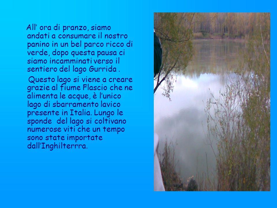 Quando il lago straripa riempie i vigneti e le radici restano sommerse per un lungo periodo ma le viti sopravvivono ugualmente a queste avverse condizioni; questo lago è in parte artificiale ed ha una forma irregolare.