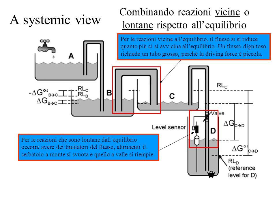 A systemic view Combinando reazioni vicine o lontane rispetto allequilibrio Per le reazioni che sono lontane dallequilibrio occorre avere dei limitato