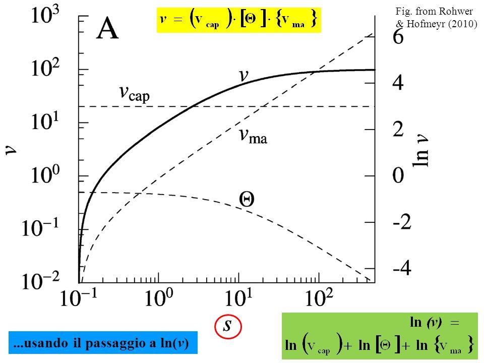 ...usando il passaggio a ln(v) Fig. from Rohwer & Hofmeyr (2010)