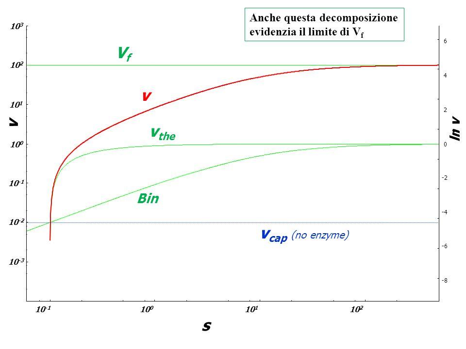 VfVf v v the Bin v ln v 10 -1 10 0 10 3 10 2 10 -2 10 -3 10 1 10 -1 10 0 10 2 10 1 v cap (no enzyme) s Anche questa decomposizione evidenzia il limite