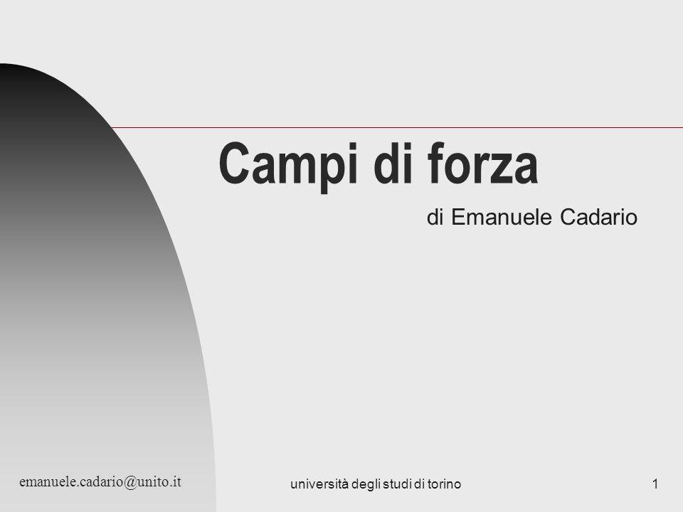 università degli studi di torino1 Campi di forza di Emanuele Cadario emanuele.cadario@unito.it