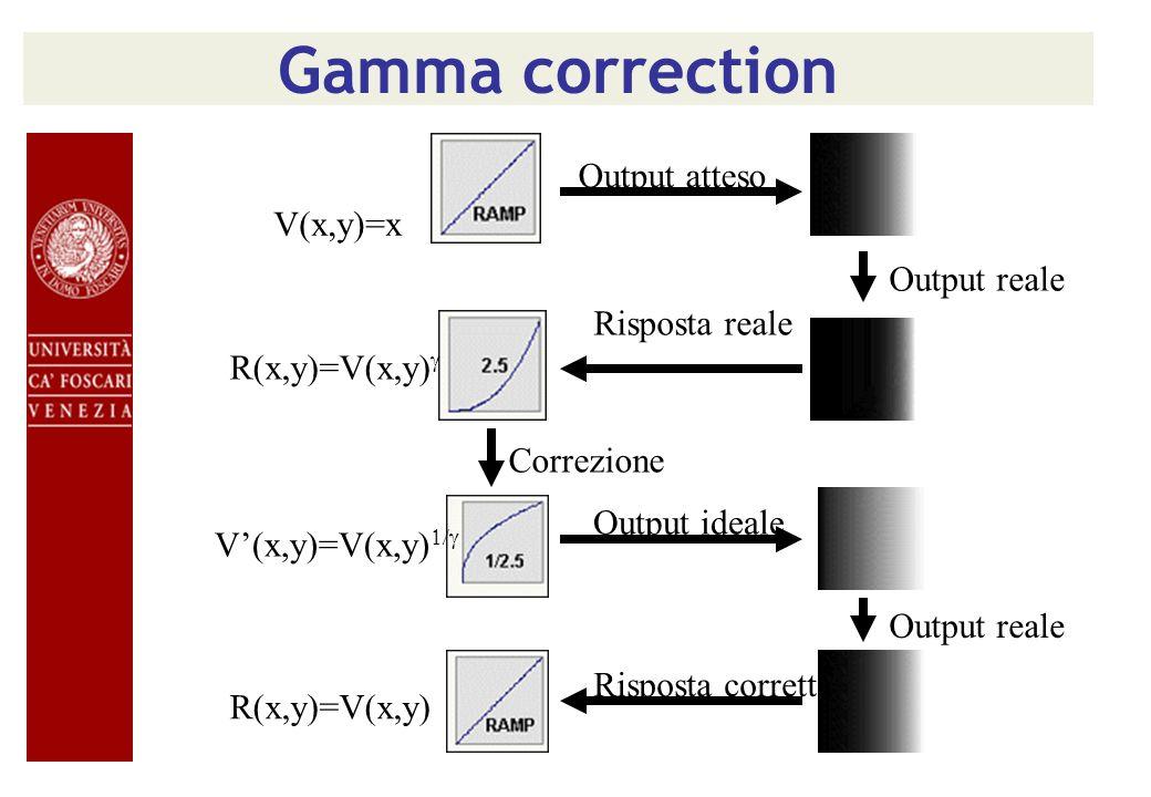 Gamma correction Output atteso R(x,y)=V(x,y) V(x,y)=x Risposta reale Output reale Correzione V(x,y)=V(x,y) Output ideale Output reale Risposta corrett