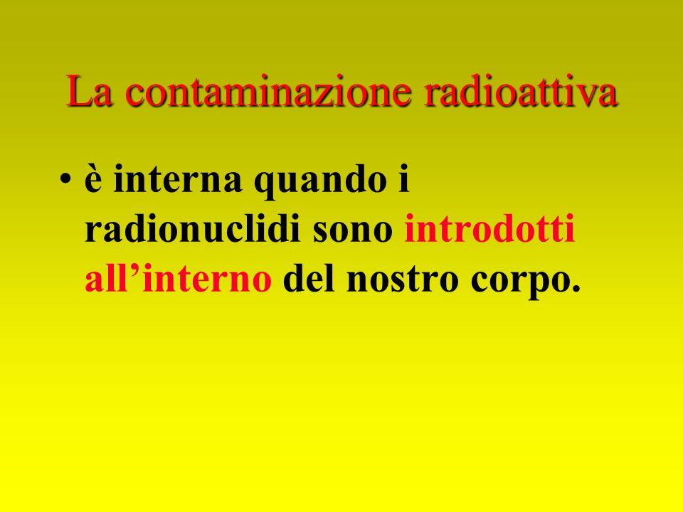La contaminazione radioattiva è interna quando i radionuclidi sono introdotti allinterno del nostro corpo.