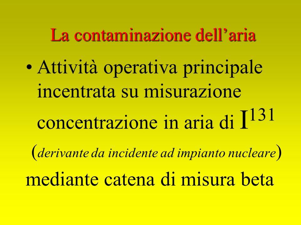 Attività operativa principale incentrata su misurazione concentrazione in aria di I 131 ( derivante da incidente ad impianto nucleare ) mediante caten