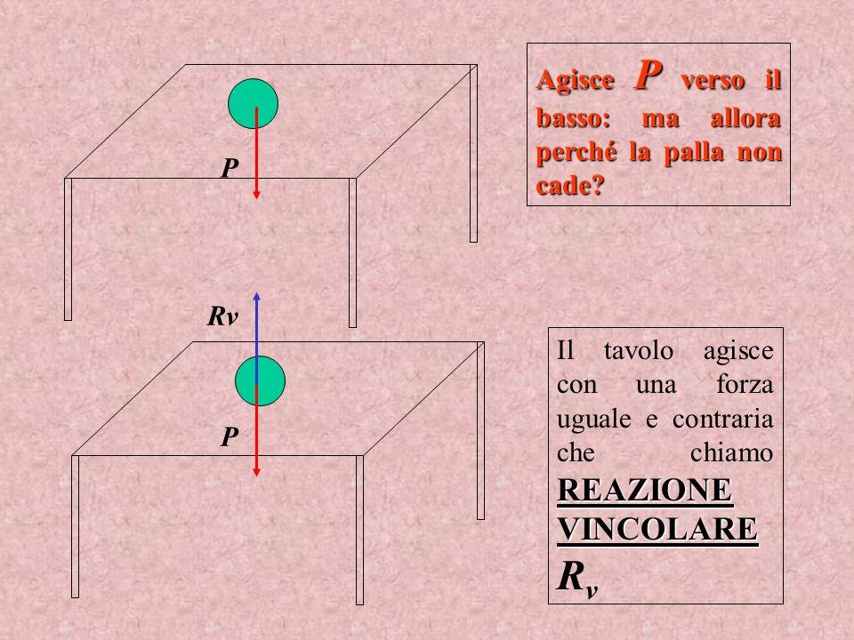Agisce P verso il basso: ma allora perché la palla non cade? REAZIONE VINCOLARE Il tavolo agisce con una forza uguale e contraria che chiamo REAZIONE