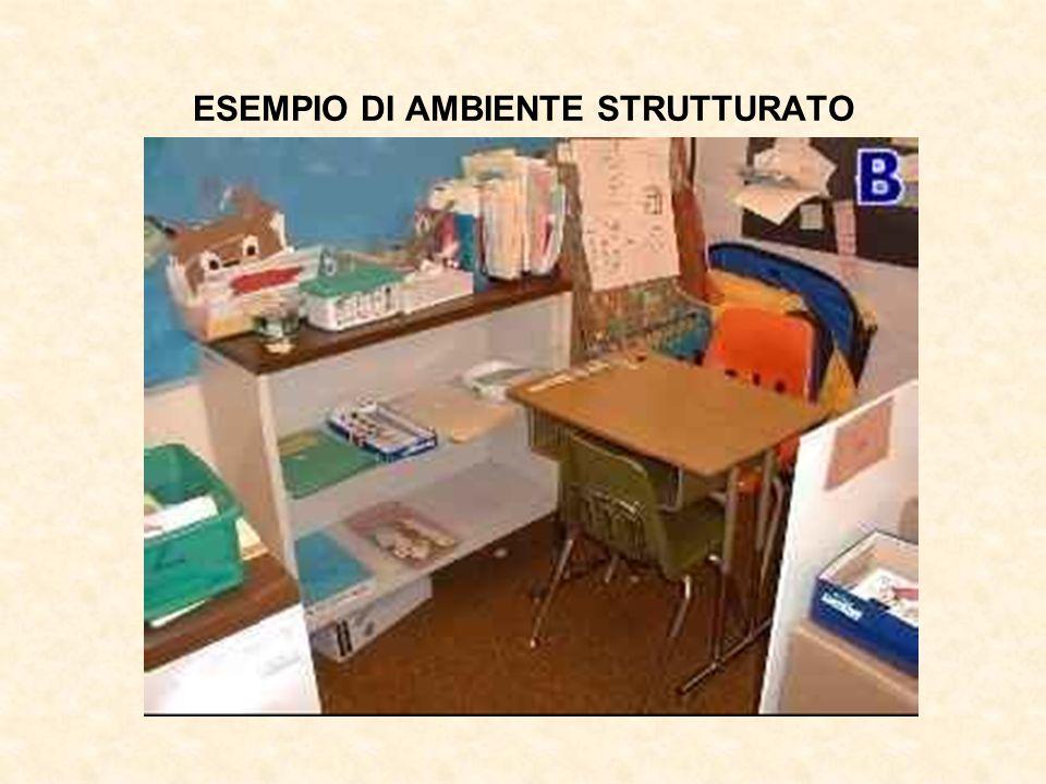ESEMPIO DI AMBIENTE STRUTTURATO