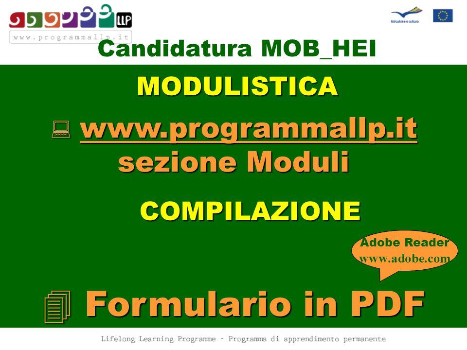 Candidatura MOB_HEI www.programmallp.it sezione Moduli Formulario in PDF Adobe Reader www.adobe.com MODULISTICA COMPILAZIONE