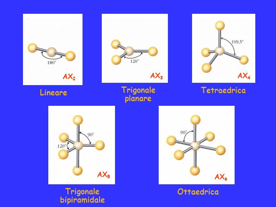 Lineare Trigonale planare Tetraedrica Trigonale bipiramidale Ottaedrica AX 2 AX 3 AX 4 AX 5 AX 6