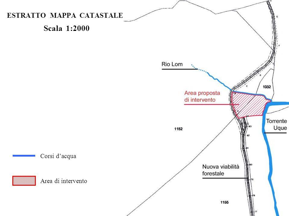 ESTRATTO MAPPA CATASTALE Scala 1:2000 Corsi dacqua Area di intervento