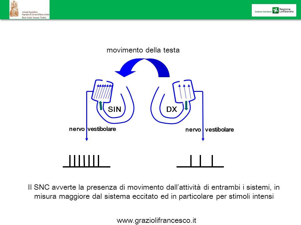 movimento della testa SINDX nervo vestibolare Il SNC avverte la presenza di movimento dallattività di entrambi i sistemi, in misura maggiore dal siste