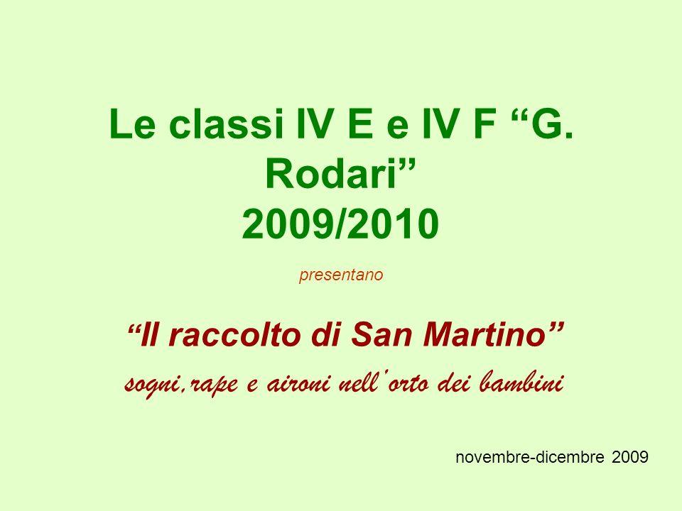 Le classi IV E e IV F G. Rodari 2009/2010 presentano Il raccolto di San Martino sogni,rape e aironi nellorto dei bambini novembre-dicembre 2009