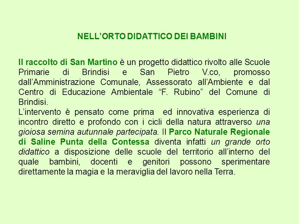 NELLORTO DIDATTICO DEI BAMBINI Il raccolto di San Martino è un progetto didattico rivolto alle Scuole Primarie di Brindisi e San Pietro V.co, promosso dallAmministrazione Comunale, Assessorato allAmbiente e dal Centro di Educazione Ambientale F.
