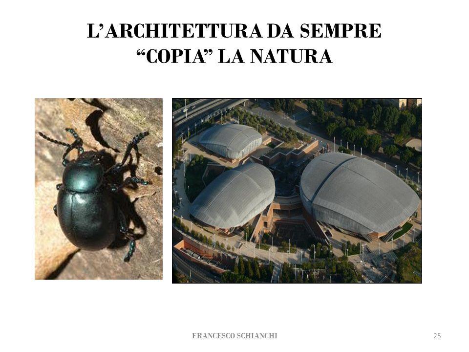 LARCHITETTURA DA SEMPRE COPIA LA NATURA 25 FRANCESCO SCHIANCHI