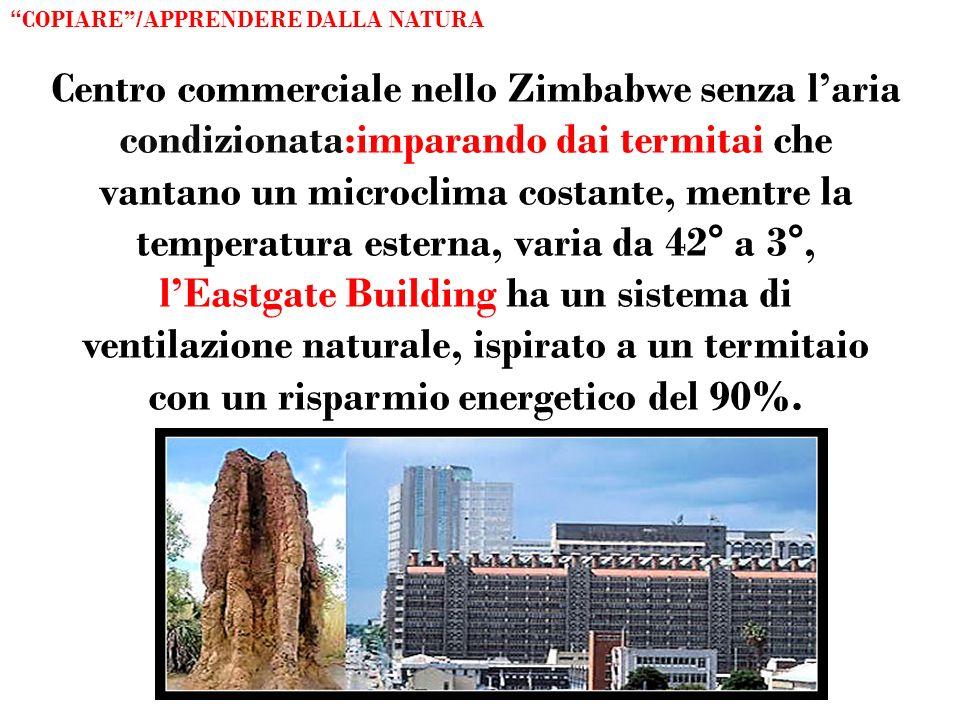 Centro commerciale nello Zimbabwe senza laria condizionata:imparando dai termitai che vantano un microclima costante, mentre la temperatura esterna, v