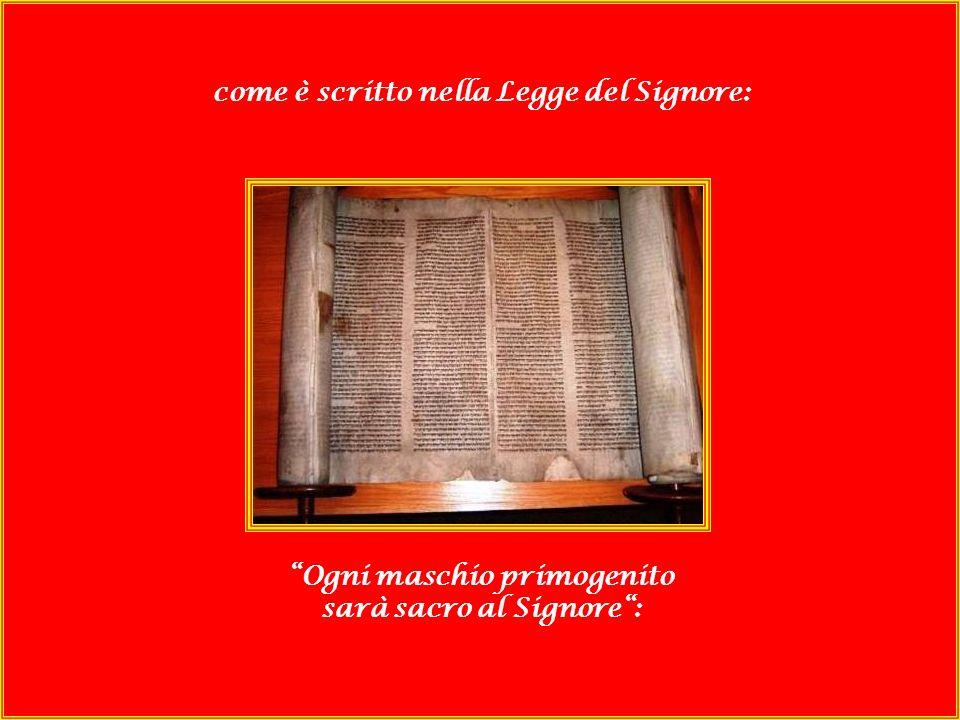 SCOREL Quando venne il tempo della loro purificazione secondo la legge di Mosè, Maria e Giuseppe portarono il bambino a Gerusalemme per offrirlo al Signore,
