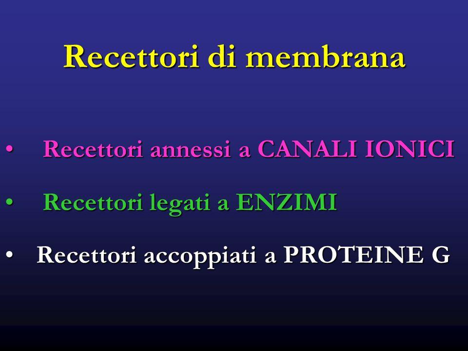 Recettori di membrana Recettori annessi a CANALI IONICI Recettori annessi a CANALI IONICI Recettori legati a ENZIMI Recettori legati a ENZIMI Recettori accoppiati a PROTEINE GRecettori accoppiati a PROTEINE G