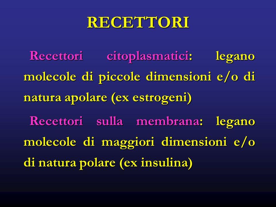 RECETTORI Recettori citoplasmatici: legano molecole di piccole dimensioni e/o di natura apolare (ex estrogeni) Recettori citoplasmatici: legano molecole di piccole dimensioni e/o di natura apolare (ex estrogeni) Recettori sulla membrana: legano molecole di maggiori dimensioni e/o di natura polare (ex insulina) Recettori sulla membrana: legano molecole di maggiori dimensioni e/o di natura polare (ex insulina)